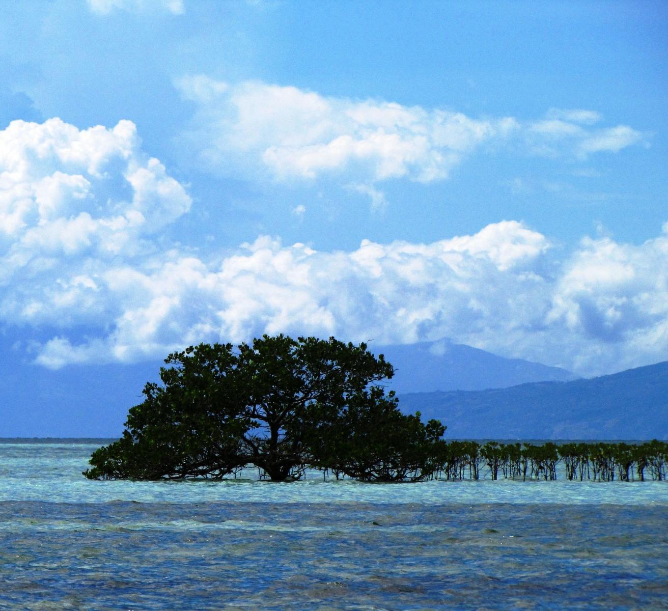 IMG_9218-Panglao-Island-hopping-2012-01-30-crop-600pxw-224x192